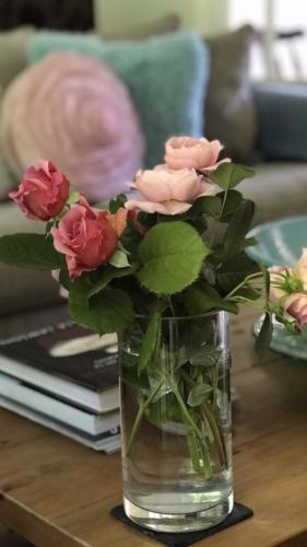 My garden roses - Lynda Nolan