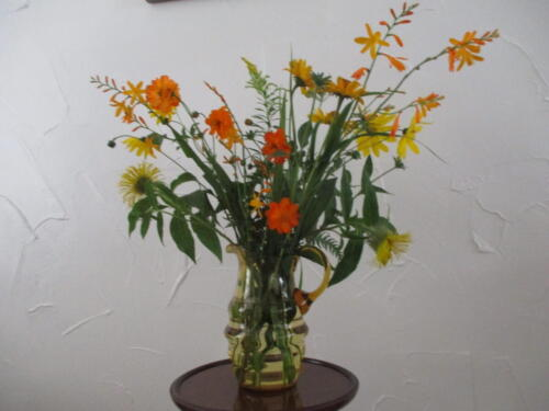 Orange & Yellow flowers from my garden - Jane Nash