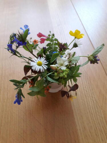 Eggcup flowers - Rosalind Bargery